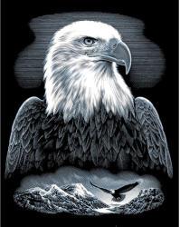 Reeves Ezüst képkarcoló - Sas