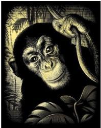 Reeves Arany képkarcoló - Csimpánz (PPCF40)