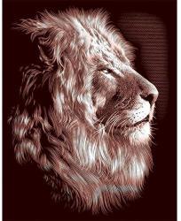 Reeves Arany képkarcoló - Fennséges oroszlánok