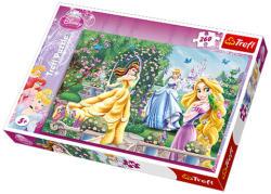 Trefl Disney Hercegnők - A kertben 260 db-os (13141)