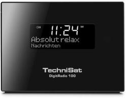 TechniSat DigitRadio 100