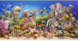Castorland Underwater Life 4000 (400089)