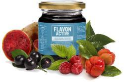 Flavon Active - 240g