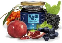 Flavon Max Plus - 240g