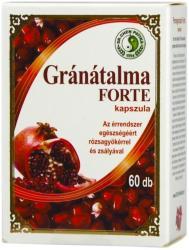 Dr. Chen Gránátalma Forte - 60db