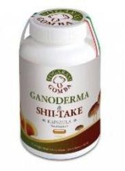 Fogarasi Ganoderma +  Shii-Take - 90db