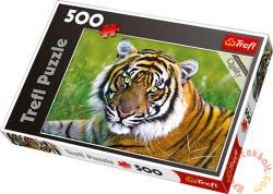 Trefl Tigris 500 db-os (37192)