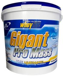 Pro Nutrition Gigant Pro Mass - 5000g