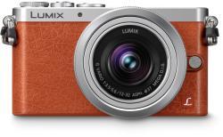 Panasonic Lumix DMC-GM1K + 12-32mm