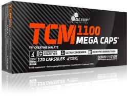 Olimp Sport Nutrition TCM - 120 caps