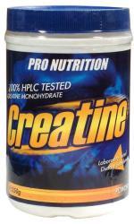 Pro Nutrition Creatine - 250g