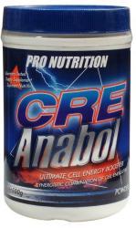 Pro Nutrition CreAnabol - 500g