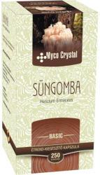 Myco Crystal Süngomba - 250db