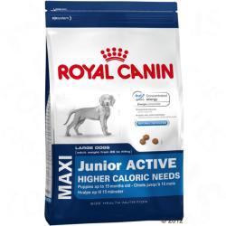 Royal Canin Maxi Junior Active 2 x 15kg