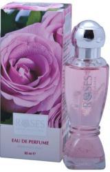 Nature of Agiva Roses EDP 65ml