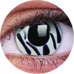 Colourvue Crazy Zebra (2db) - 3 havi