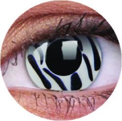 Colourvue Crazy Zebra (2db) - 3 havi