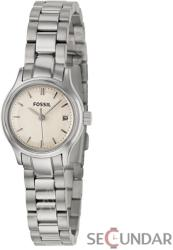 Fossil Archival ES3165