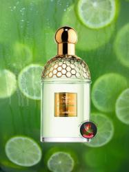 Guerlain Aqua Allegoria Limon Verde EDT 75ml