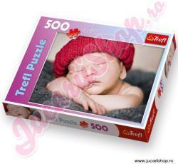 Trefl Micuţ somnoros 500