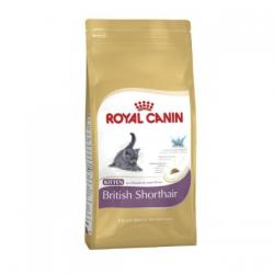 Royal Canin Kitten British Shorthair 10kg