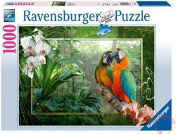 Ravensburger Papagájok a dzsungelben 1000 db-os (19188)