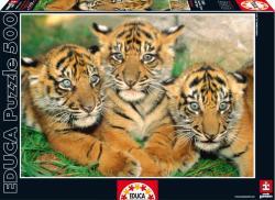 Educa Tigriskölykök 500 db-os (15965)
