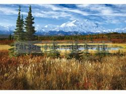 Educa Denali Nemzeti Park - USA 1500 db-os (16008)