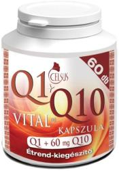 Celsus Q1+Q10 Vital - 60db