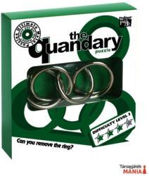 Professor Puzzle The Quandary - fém ördöglakat