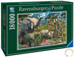 Ravensburger Az itatónál (Dzsungel) 18000 db-os (17823)