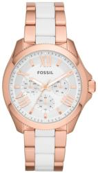 Fossil AM4546