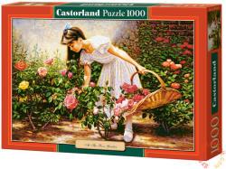 Castorland Rózsakertben 1000 db-os (C-103126)