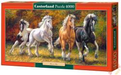 Castorland Futásra született 4000 db-os