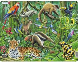 Larsen Dél-Amerikai esőerdő 70 db-os
