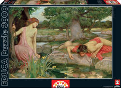 Educa J.W. Waterhouse: Echo and Narcissus 3000 db-os (15541)