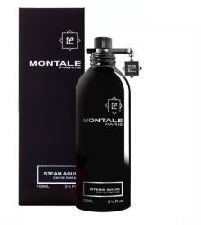 Montale Steam Aoud EDP 100ml