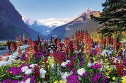 Ravensburger Virágzó hegyvidék 3000 db-os