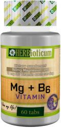 HERBioticum Mg+B6 vitamin kapszula - 60 db