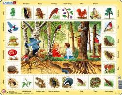 Larsen Erdők élővilága 48 db-os