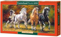 Castorland Vágtára születtek 4000 db-os