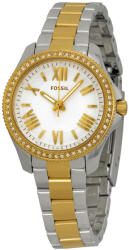 Fossil AM4579