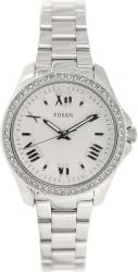 Fossil Cecile AM4576