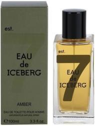 Iceberg Eau de Iceberg Amber EDT 100ml Tester