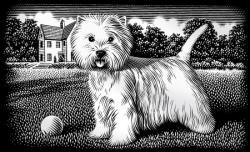 Reeves Ezüst képkarcoló mini - Kutyus
