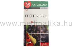 Naturland Feketeribizli Gyümölcstea 20 filter