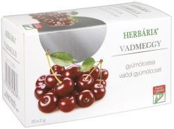 Herbária Vadmeggy Gyümölcstea 20 filter