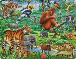 Larsen A dzsungel állatai 20 db-os