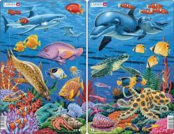 Larsen Korallzátony 25 db-os
