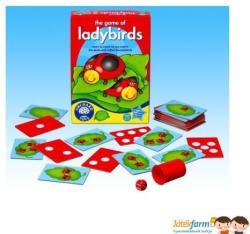 Orchard Toys Katicabogaras